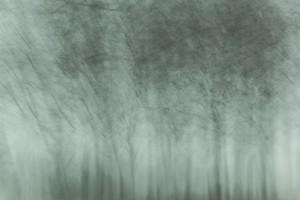 Landscapes #3 (c) Anatoly Rudakov